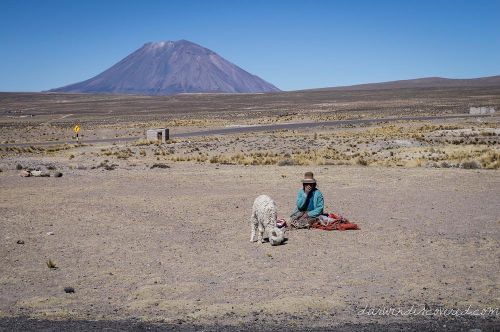 DarwinDiscovered_Arequipa-3