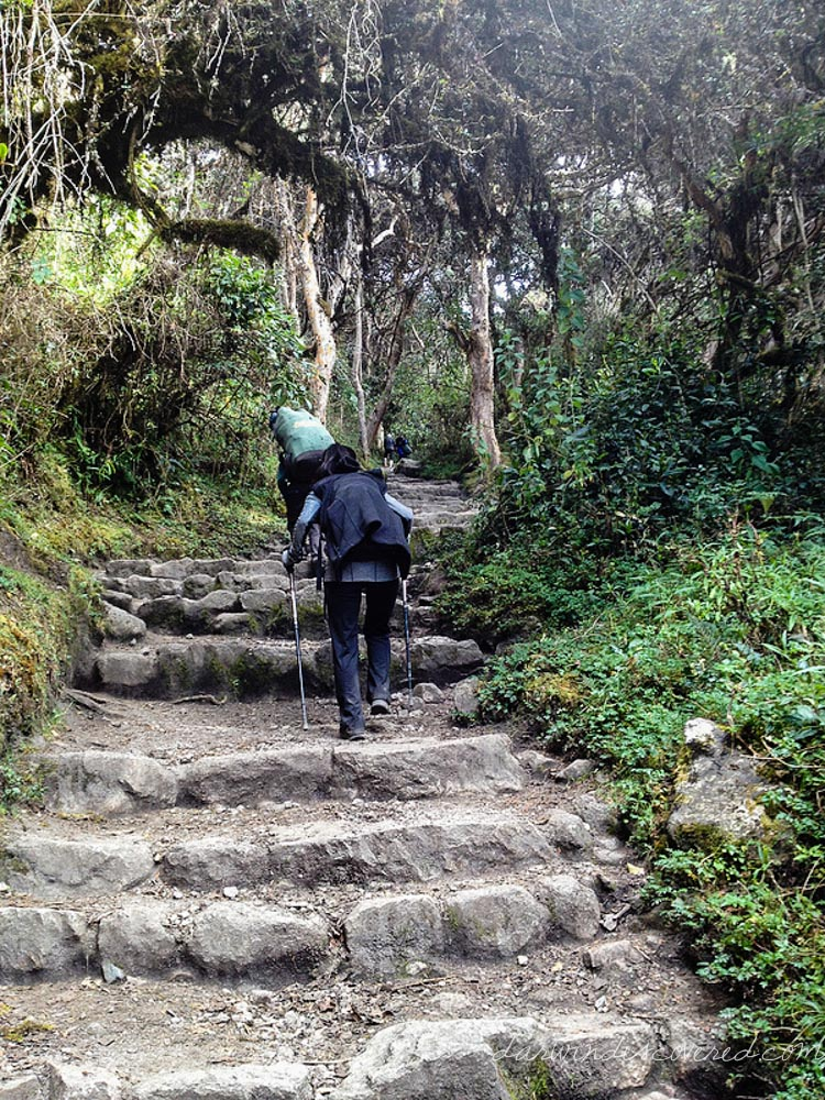 The Inca Trail Hike: 4 days, 26 miles, and a helluva lot of steps