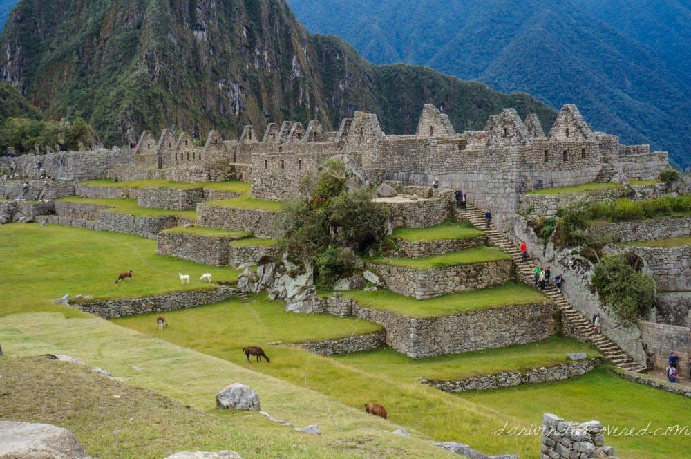 The Inca Trail Classic 4-Day Hike: Day 4, Machu Picchu