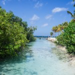 Travel Notes: Aruba